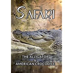Safari The Alligator & American Crocodile