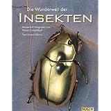 """Die Wunderwelt der Insekten. Meisterhaft fotografiert von Pascal Goetgheluckvon """"."""""""