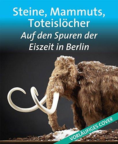 Steine, Mammuts, Toteislöcher: Auf den Spuren der Eiszeit in Berlin (Edition Stadtmuseum)