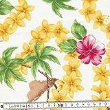 キャシー中島のハワイアンプリント生地  オールドアロハ・HOU(ホウ) 花びら一部ラメ入り (20084-10) ※価格は、10cmの価格。ご注文は、50cmから10cm単位で承ります。 Kathy Mom ルシアン LECIEN アイランドスタイル 布・生地