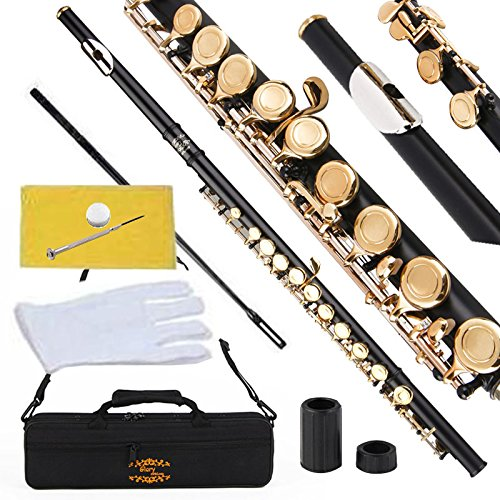 Glory Closed Hole C Flute With Case, Tuning Rod and Cloth ...