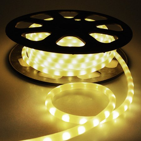 "50Ft Warm White 1/2"" Led Neon Rope Light 120V 2 Wire Flexible Christmas Lighting"