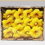 バティック柄のボックスに入ったハイビスカスの造花の12個入りセット (オレンジ)
