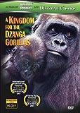 Kingdom for the Dzanga Gorillas