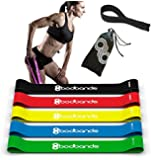 Resistance Bands - 5 Exercise Bands for Exercise, Stretching, Crossfit and Physical Therapy - Bonus Door Anchor and Access to Workout Videos Online, Instructional Booklet and Carrying Bag