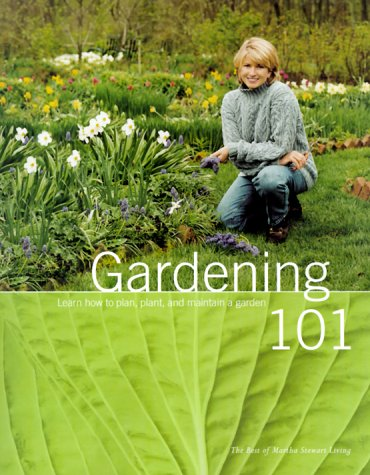Gardening 101: Learn How To Plan, Plant, And Maintain A Garden