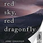 Red Sky, Red Dragonfly | John Galligan