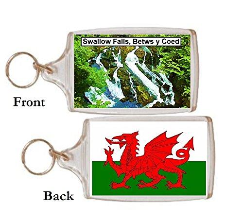 Schlüsselring Swallow wasserfall Betws y Coed Wales Geschenk Tourist Souvenir