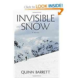 Invisible Snow Quinn Barrett
