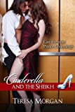 Cinderella and the Sheikh (Hot Contemporary Romance)