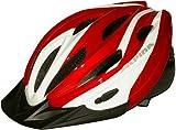 ALPINA TOUR12 ヘルメット ホワイト/レッド