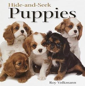 Hide-and-Seek Puppies (Hide-And-Seek Book) Roy Volkmann