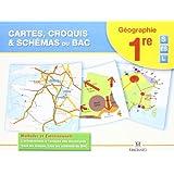 Cartes, croquis & schémas du Bac 1e S ES L : Méthodes et Entraînements