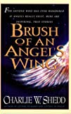 Brush of Angels Wing (0802726860) by Shedd, Charlie W.