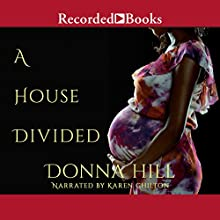 A House Divided Audiobook by Donna Hill Narrated by Karen Chilton