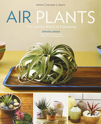 Air Plants - Malaysia Online Bookstore