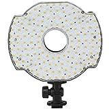 LEDGO 126 LED On-Camera Ring Light: Fits over Shotgun Mic, 5600K daylight, 95 CRI, 920 Lumens, Dimmable, Shoe Mounts & Three (3) Pc Filter Kit Included, Runs on optional Sony Panasonic or AA Batteries