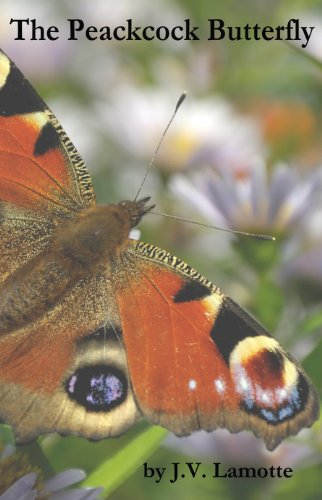 Book: The Peacock Butterfly by J. V. Lamotte