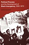 Political Process and the Development of Black Insurgency, 1930-1970 (0226555526) by McAdam, Doug