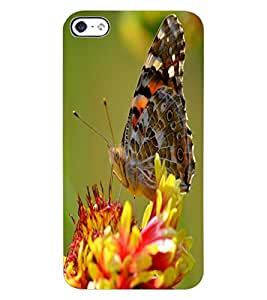 ColourCraft Beautiful Butterfly Design Back Case Cover for APPLE IPHONE 4S