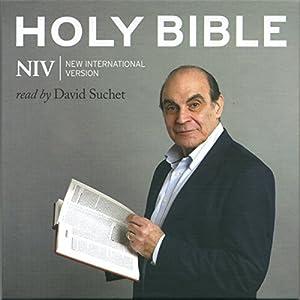 Complete NIV Audio Bible (New Testament) Audiobook
