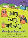 Hairy, Scary, Ordinary: What Is An Adjec