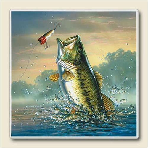 AbsorbaStone Coaster set~ Bass Fishing ~ 4 Tile Drink Coasters ~ code 078