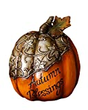 Your Hearts Delight 6-1 4 by 5-Inch Autumn Blessings Pumpkin Decor, Small