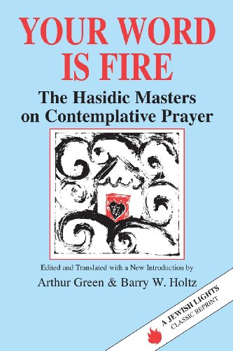 Your Word Is Fire: The Hasidic Masters on Contemplative Prayer (A Jewish Lights Classic Reprint) jewish images in the comics