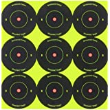 Birchwood Casey Shoot-N-C 2-Inch Round Bull's-Eye Target (Pack of 12)