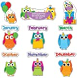 Carson Dellosa Colorful Owls Birthday Bulletin Board Set (110227)