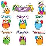 Carson Dellosa Colorful Owls Birthday Bulletin Board Set (110227)