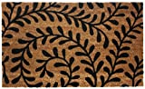 J & M Home Fashions Vinyl Back Coco Doormat 18 by 30-Inch Black Ferns