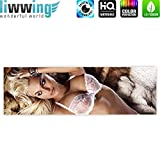 Canvas picture 145x45cm (57.1 x 17.7 inch) PREMIUM PLUS 3cm wooden stretcher-frame 1-piece EROTIC ARTS no. 1 by liwwing (R) Canvas Print Canvas Art Wall Picture Wall Mural Photo Sexy woman, nude, erotic, lingerie, Girl, Woman