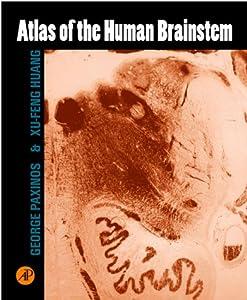 atlas of the human brainstem george paxinos. Black Bedroom Furniture Sets. Home Design Ideas