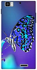 The Racoon lovely butterfly night hard plastic printed back Case for Lenovo K900