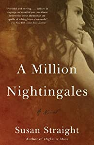 A Million Nightingales - Susan Straight