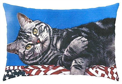 irocket-a-cat-laying-on-a-bunning-throw-pillow-cover-24-x-24