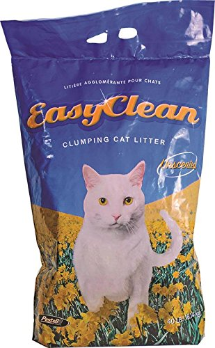 Easy Clean Unscented Scoopable Cat Litter