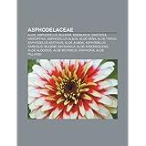 Asphodelaceae: Aloe, Asphodelus, Bulbine, Eremurus, Gasteria, Haworthia, Asphodelus Albus, Aloe Vera, Aloe Ferox...