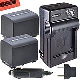 BM Premium Pack of 2 NP-FV70 Batteries & Charger Kit for Sony HDR-CX330 HDR-CX900 HDR-PJ340 HDR-PJ540 HDR-PJ670/B HDR-PJ810 FDR-AX33/B FDR-AX100 Handycam Camcorder + More!!