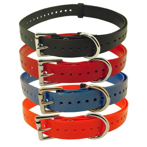 Collar with Roller Buckle and Nickel Hardware Color: Red