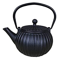 Pumpkin Teapot Classic Iron Kettle Japan Tetsubin