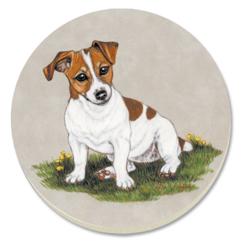 counterart jack russell terrier absorbent coasters set of With best brand of paint for kitchen cabinets with jack russell terrier wall art