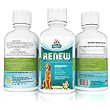 Glucosamine for Dogs with Chondroitin & MSM Liquid Hip & Joint Supplement For Maximum Nutrient Absorption Compared to Chewables ♥ Prevent Poor Joint Health & Renew Older Dogs Aching Joints ♥ 100% Money Back GUARANTEE ♥ Made in USA ♥ Buy Now! (32 oz)