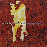 Suffocating the Bloom by Echolyn (2004-08-02)