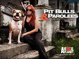 Pit Bulls And Parolees Season 5