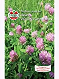 Rotklee Gartendoktor 180gr für ca. 40qm