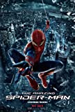 (11x17) The Amazing Spider-Man Web Swing Movie Poster