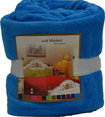 Fancy Collection Luxury Micro-Fleece Ultra Plush Solid Blanket (Queen, Light Blue) front-912512